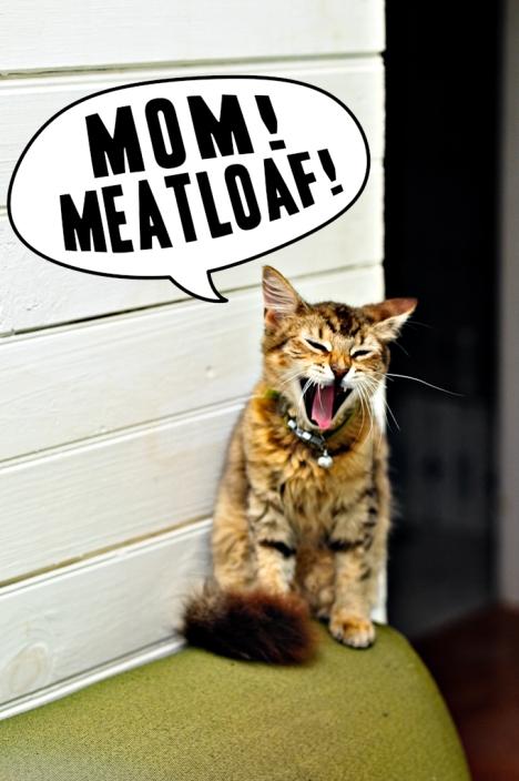 goob meatloaf